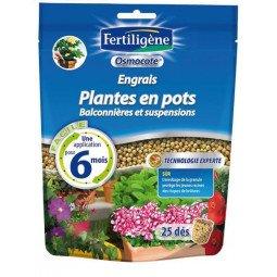 Dès d'engrais plantes en pots, balconnières FERTILIGENE