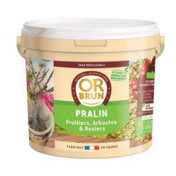 Pralin OR BRUN 2kg