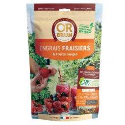 Engrais fraisiers & fruits rouges granulés OR BRUN 650g