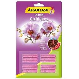 Engrais orchidées bâtonnets ALGOFLASH (x20)