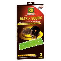 Les pièges a glu rats et souris KB
