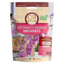 Bâtonnets orchidées OR BRUN 25 unités