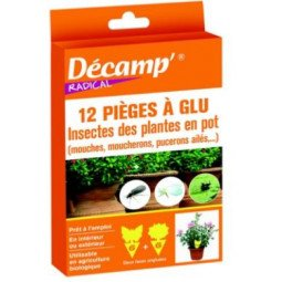 Piège a glu contre les insectes des plantes en pot DECAMP'