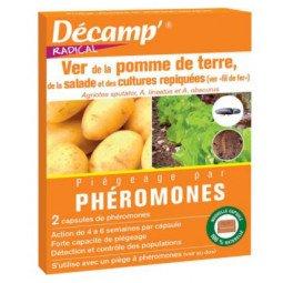 Phéromones contre le ver de la pomme de terre, de la salade et des cultures repiqués DECAMP'