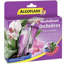 Doses Revitalisantes Orchidées ALGOFLASH (5doses)